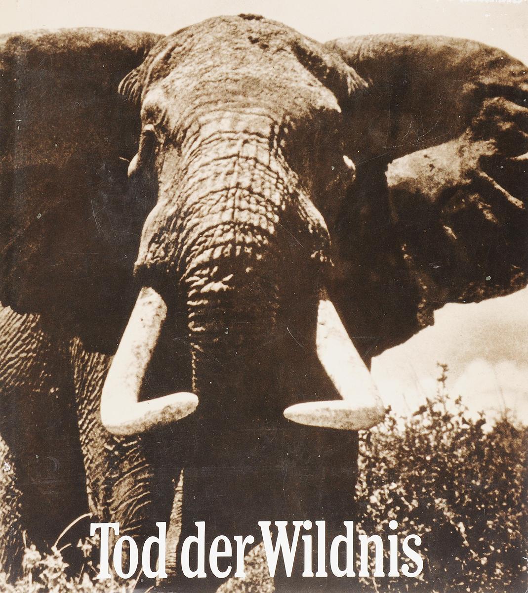 Peter H. Beard Tod der Wildnis женские сапоги tod s tod s 2014
