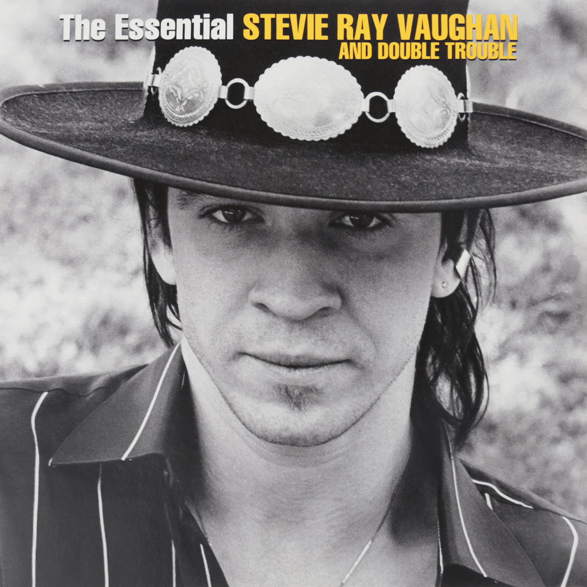 Stevie Ray Vaughan & Double Trouble Stivie Ray Vaughan And Double Trouble. The Essential (2 LP) stevie ray vaughan stevie ray vaughan texas flood