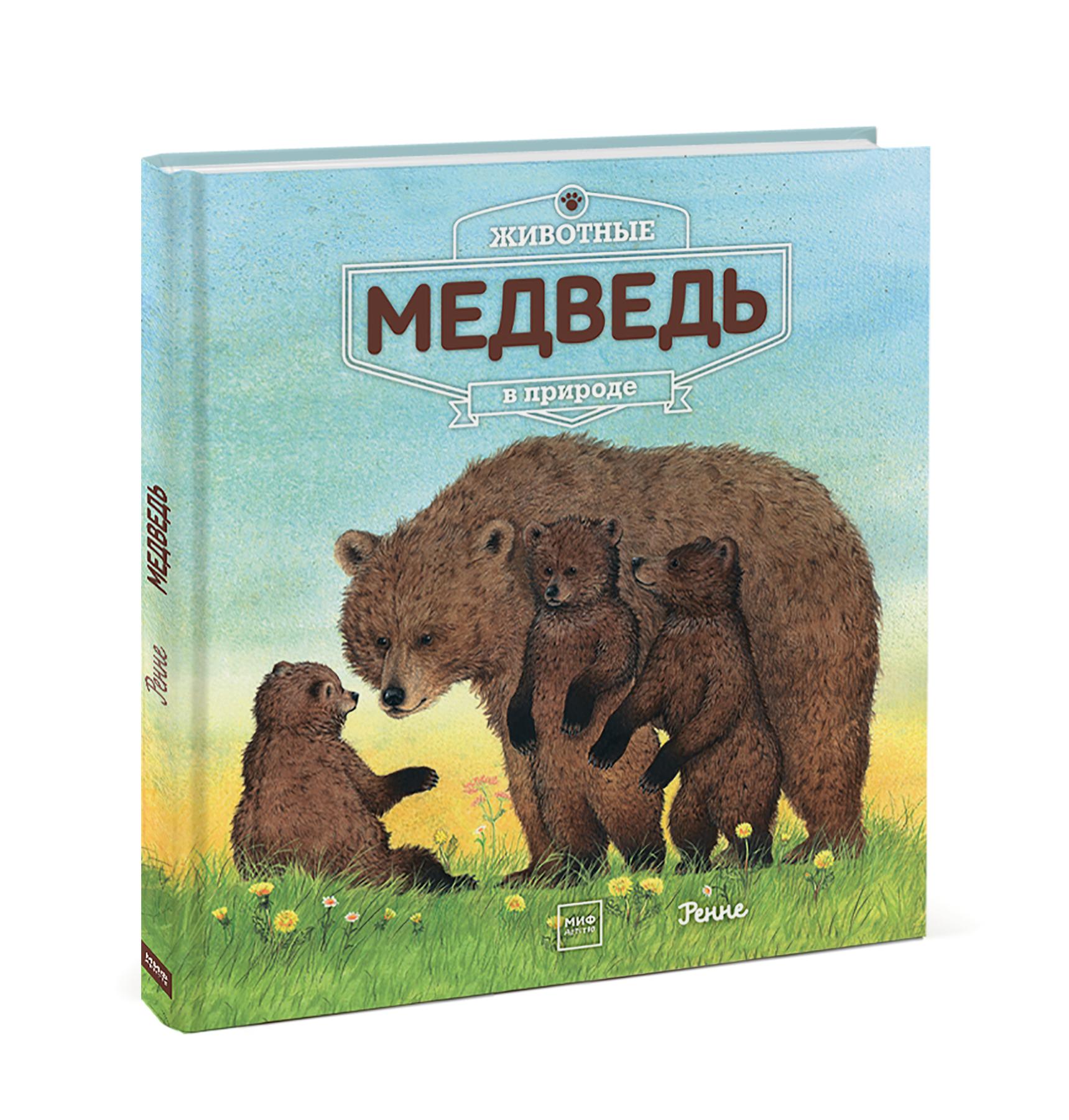 Животные в природе. Медведь. Ренне