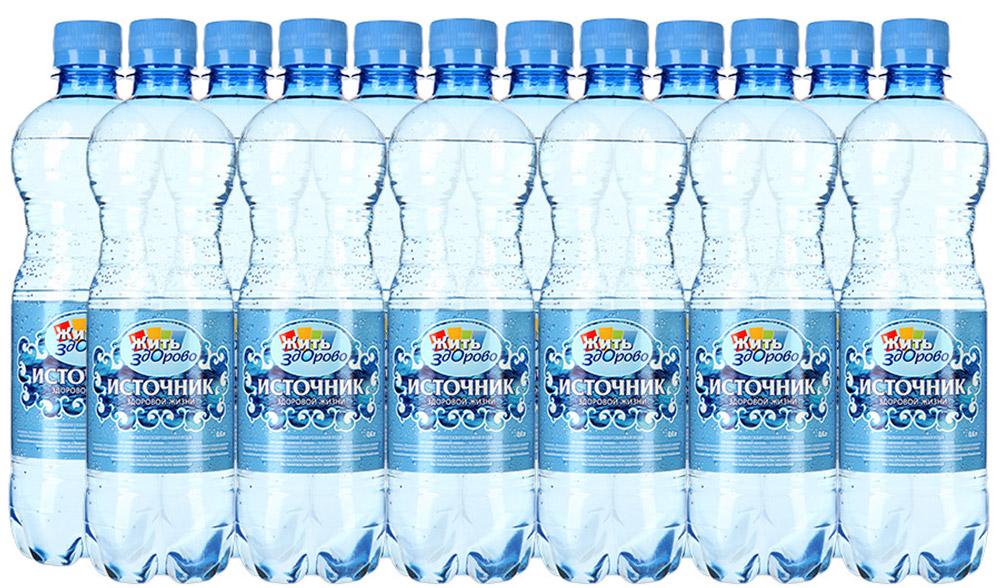 """""""Источник здоровой жизни"""" питьевая вода газированная, 12 шт по 0,6 л"""