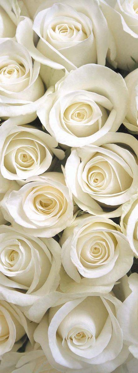 Фотообои Milan Белые розы, текстурные, 100 х 270 см пользовательские фотообои 3d европейский стиль ретро диван тв фон обои фреска стены книжный шкаф книги книжная полка фреска стены бумага