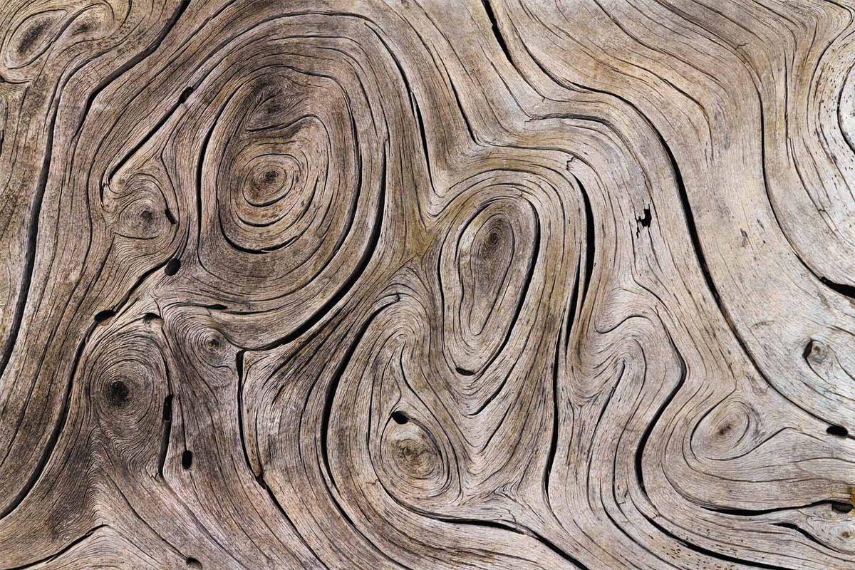Фотообои Milan Текстура дерева, текстурные, 200 х 135 см. M 622 фотообои milan ромашки текстурные 200 х 135 см m 619