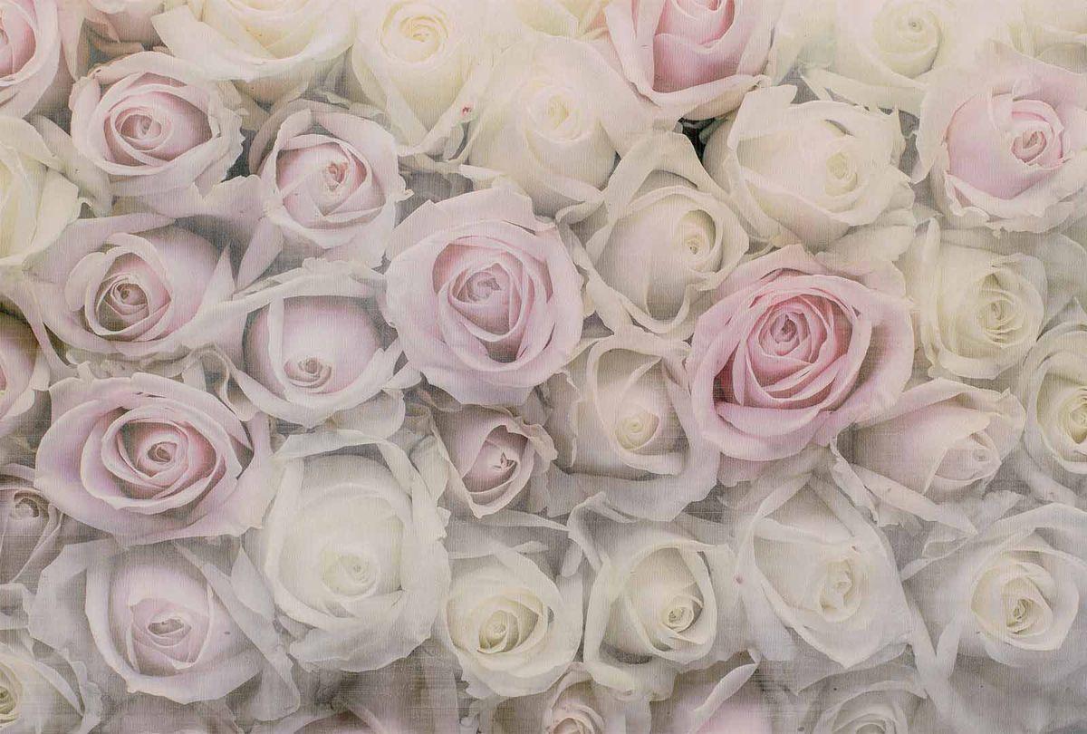 Фотообои Milan Розовая нежность, текстурные, 300 х 200 см. M 718 фотообои milan в лесу текстурные 300 х 200 см m 701