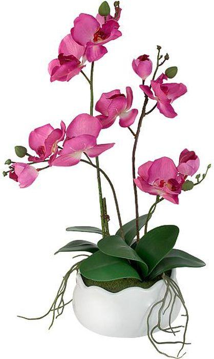 Декоративные цветы в вазе Dream Garden Орхидея бордо, 30 х 17 х 42 см little dream garden