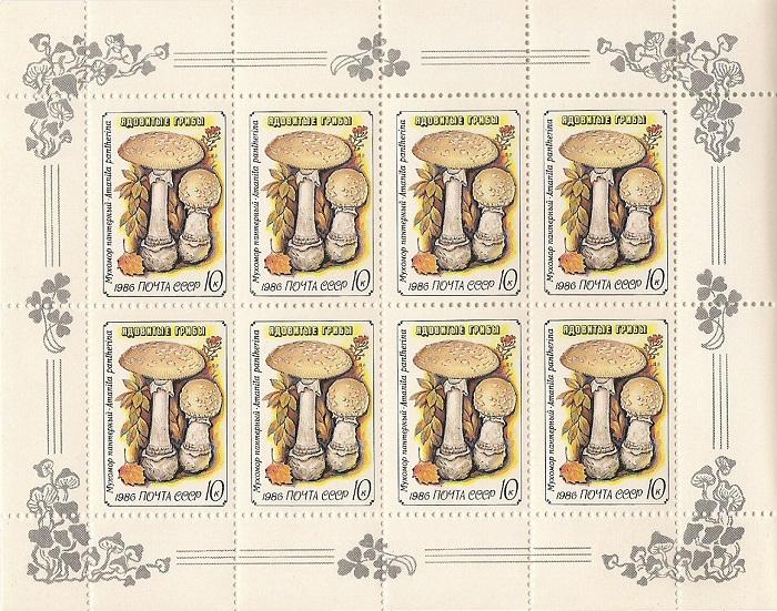 1986. Ядовитые грибы. № 5724 - 5728мл. Малые листы. Серия5724 - 5728млСерия из 5 малых листов из 8 марок