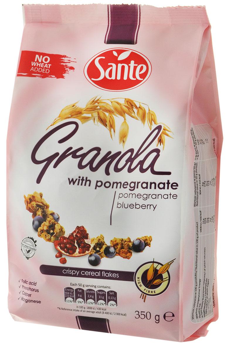 Sante Granola хрустящие злаковые хлопьясгранатом и клюквой,350г