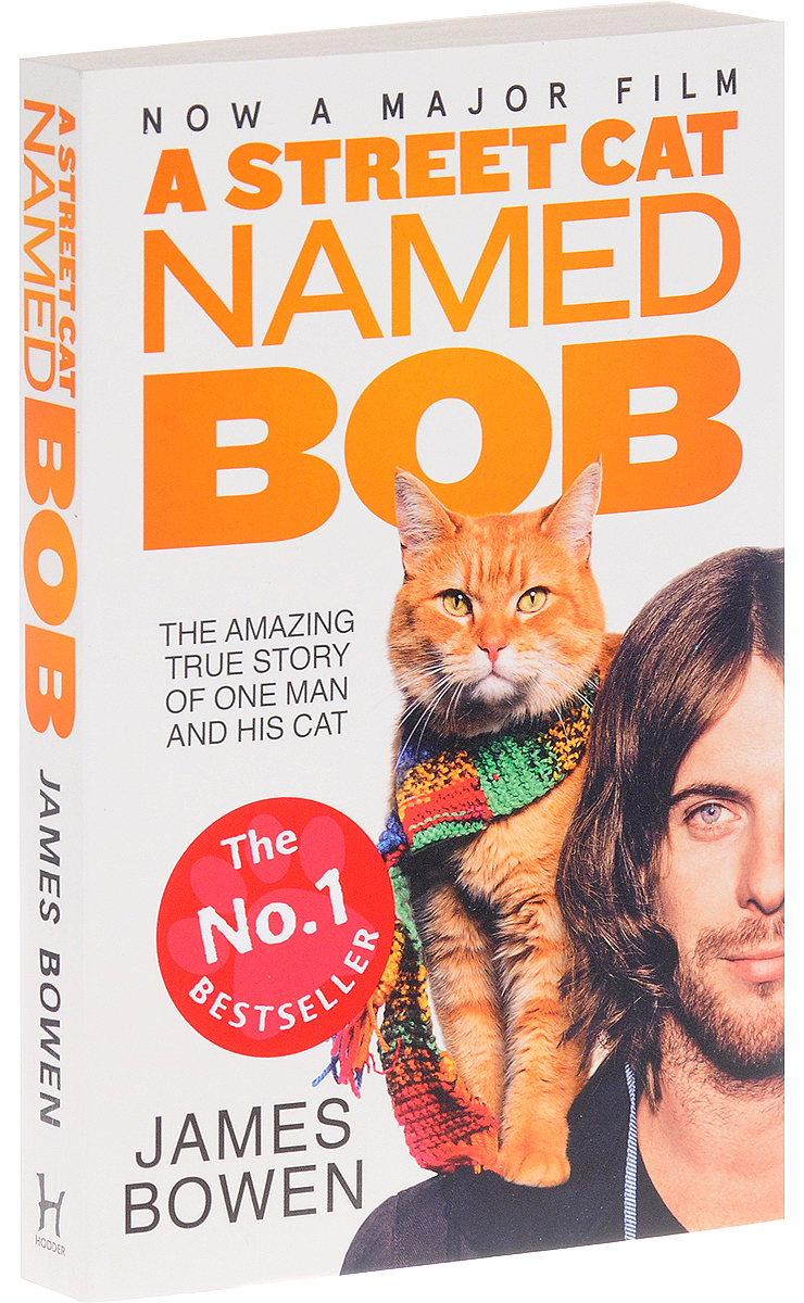 A Street Cat Named Bob delaney jp the girl before international bestseller