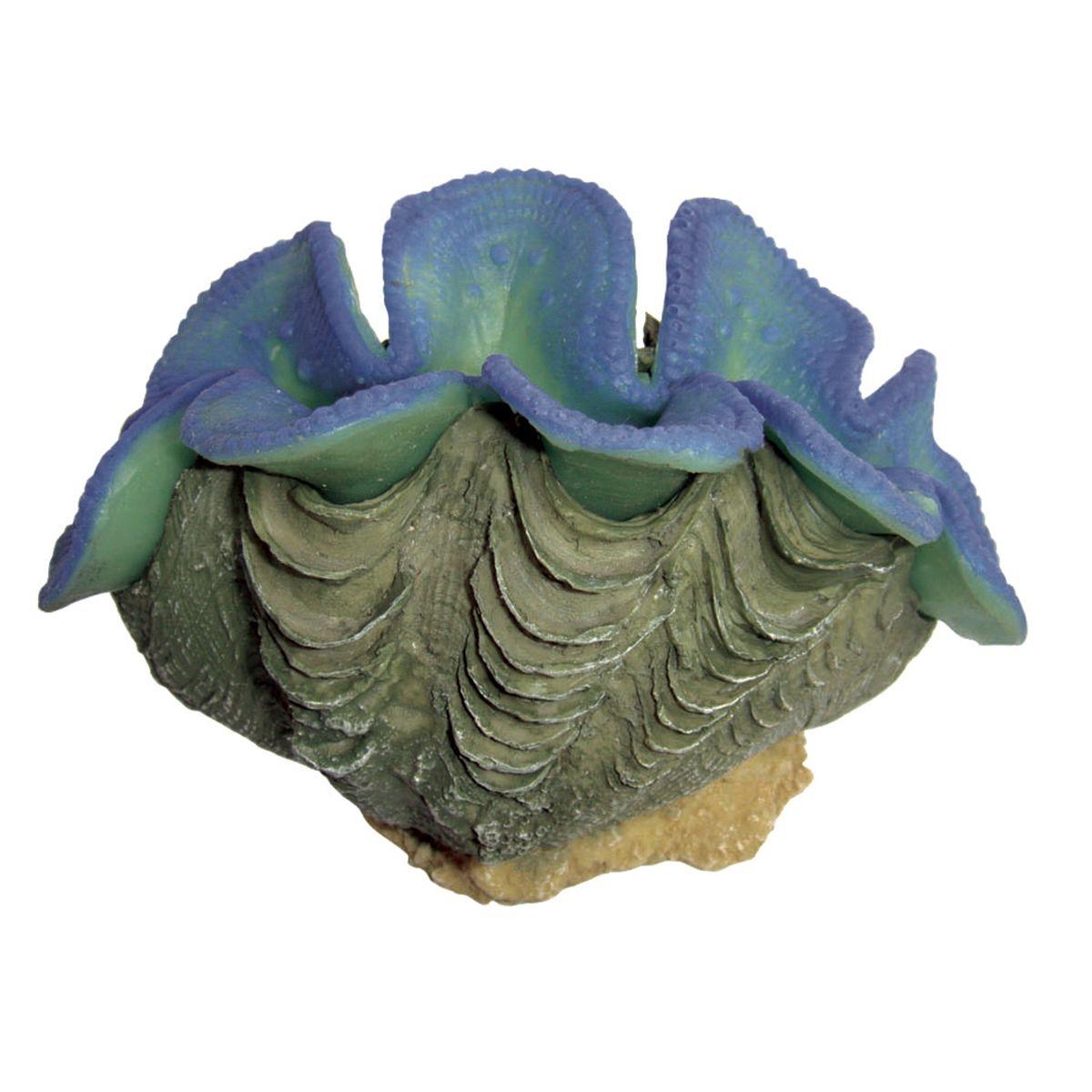 Декорация для аквариума ArtUniq Тридакна синяя, 9,5 x 5,5 6 см
