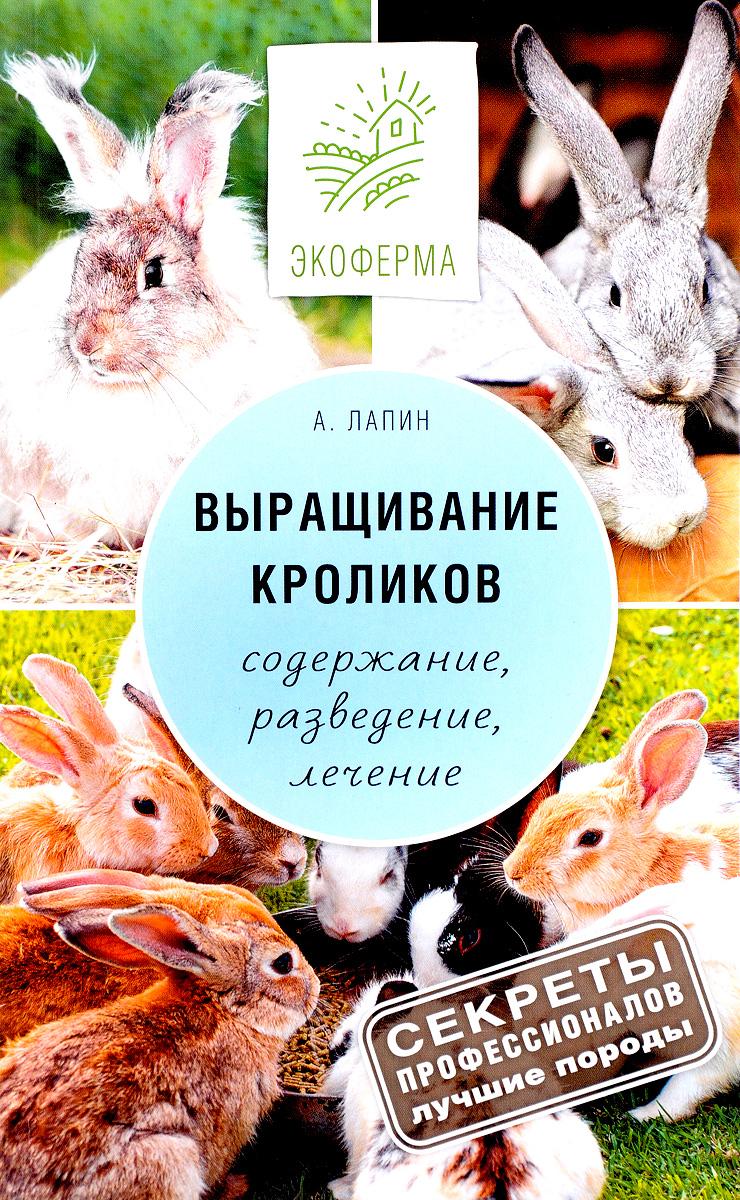 А. Лапин Выращивание кроликов. Как содержать, разводить, лечить - советы профессионалов. Лучшие породы лапин а выращивание кроликов содержание разведение лечение