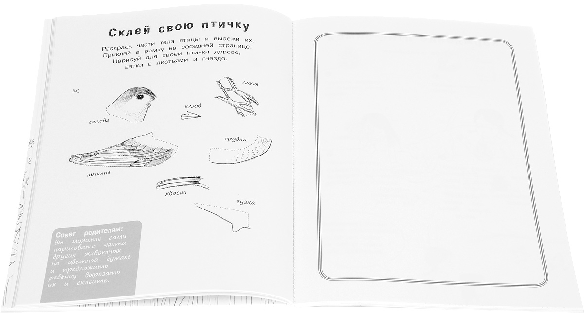 Я учусь с Montessori. Книга для ознакомления с окружающим миром (+ наклейки). Эва Эррманн