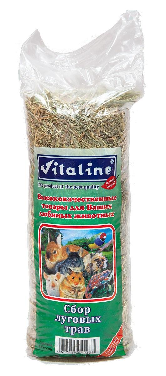 Сено для грызунов Vitaline, сбор луговых трав, 400 г корм для грызунов vitaline сено 14 7л