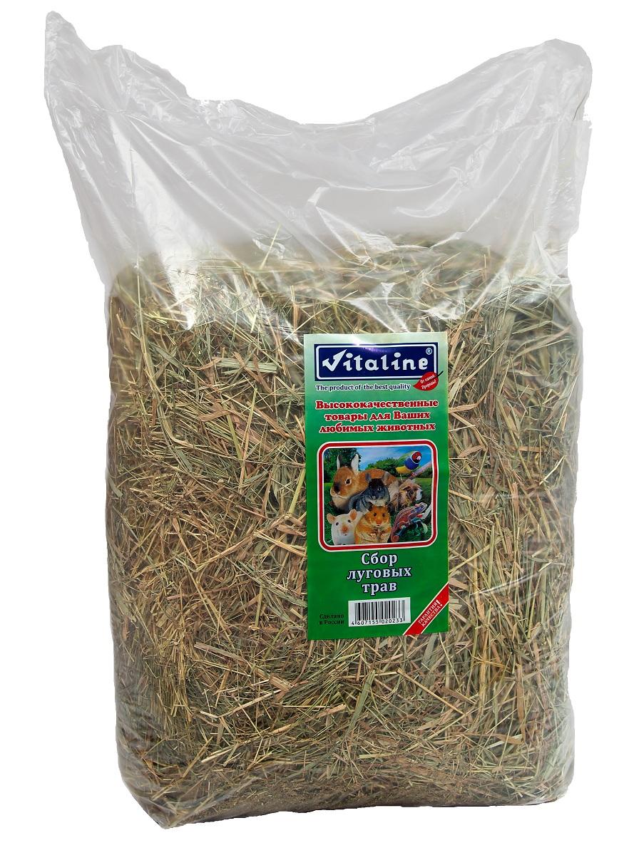 Сено для грызунов Vitaline, сбор луговых трав, 3 кг корм для грызунов vitaline сено 14 7л