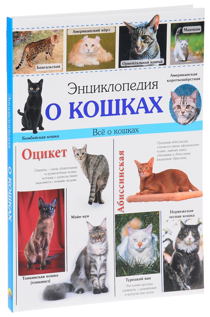 Ярослава Соколова Энциклопедия о кошках