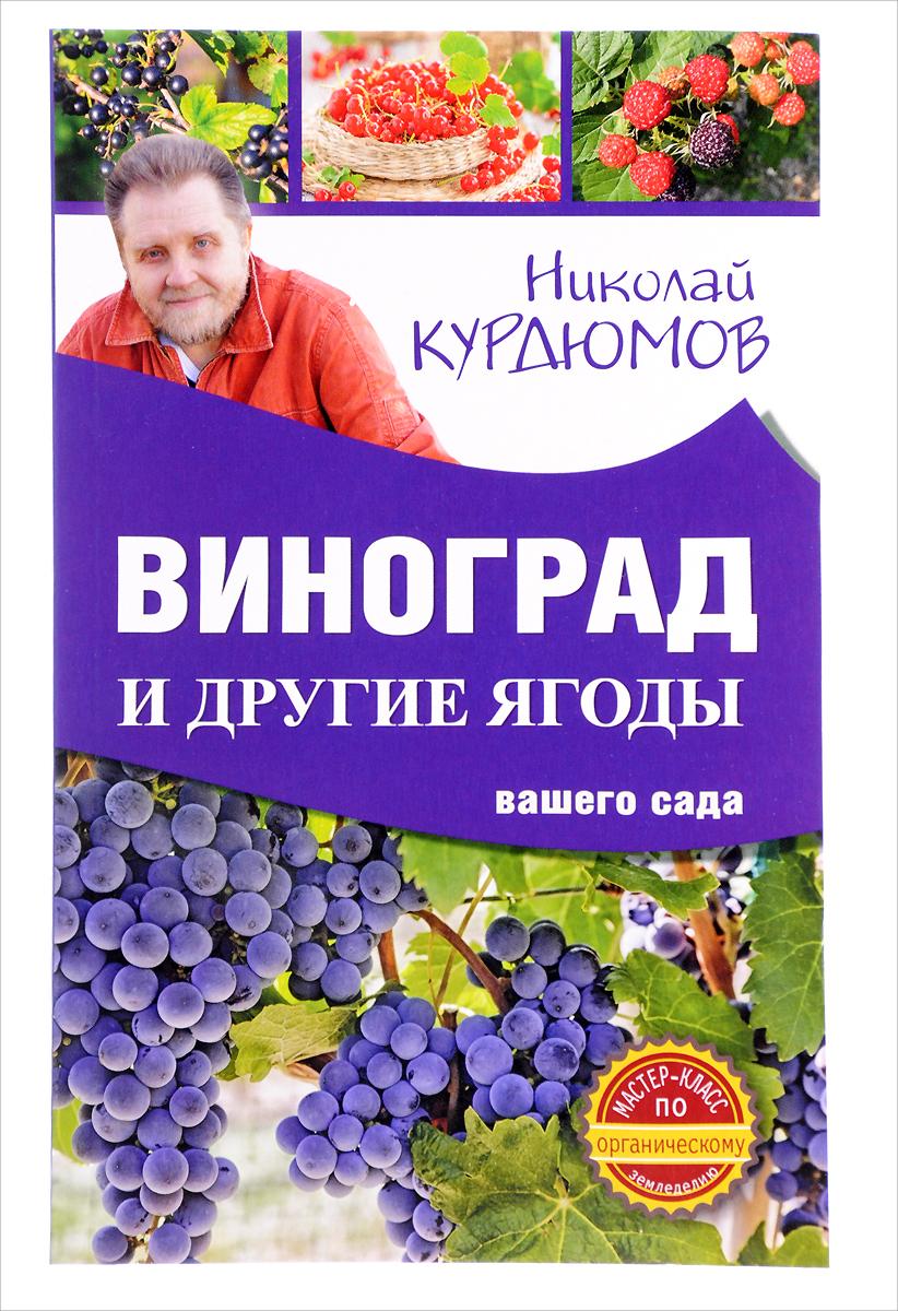 Николай Курдюмов Виноград и другие ягоды вашего сада