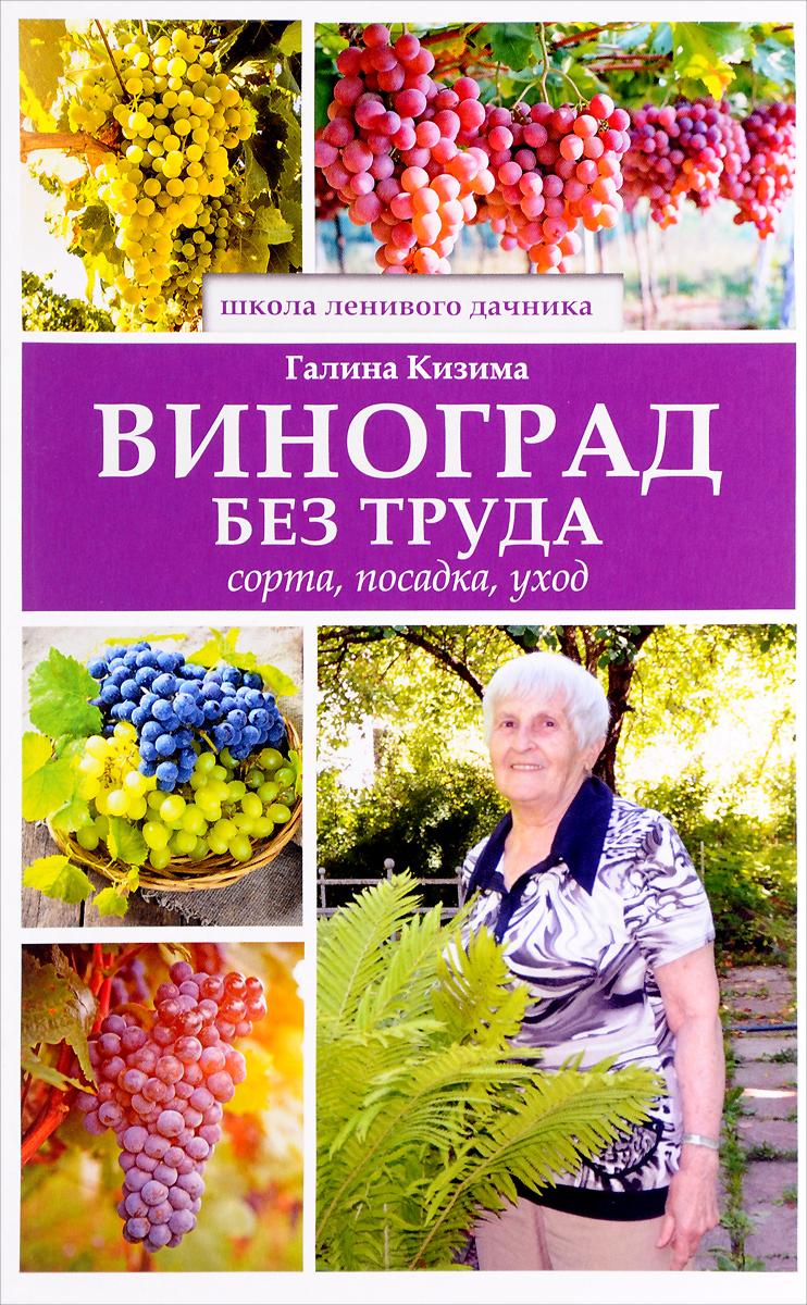 Галина Кизима Виноград без труда
