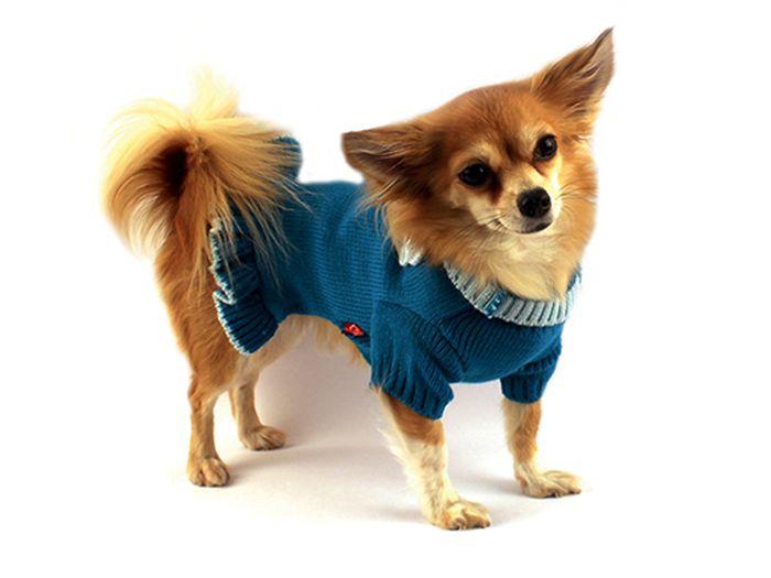 """Платье для собак Каскад """"Цветок"""", вязаное, цвет: бирюзовый. Размер M"""
