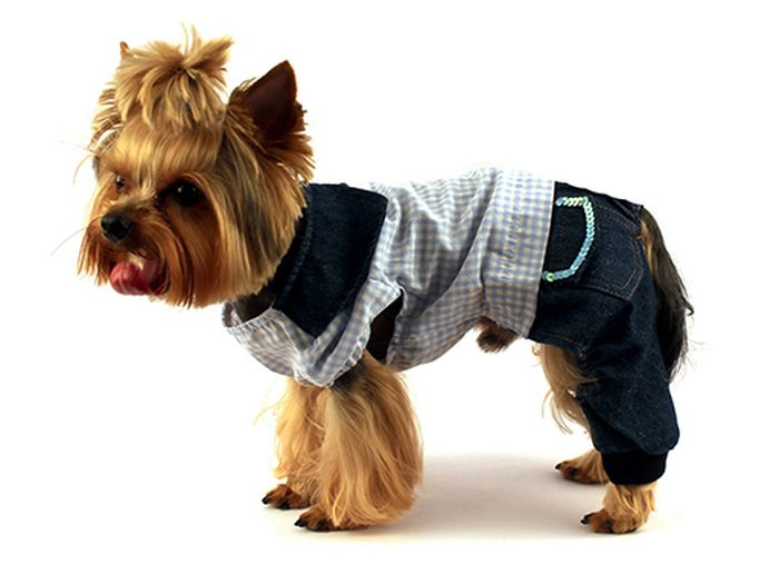 "Комбинезон для собак ""Каскад"", унисекс, цвет: голубой. Размер XL"