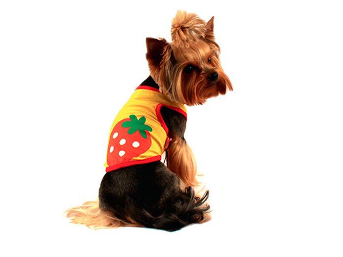 """Майка для собак Каскад """"Клубнички"""", унисекс, цвет: желтый, красный. Размер L"""