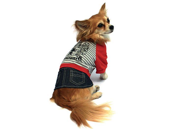 """Костюм для собак Каскад """"Aristocrat"""", унисекс, цвет: серый, красный. Размер S"""