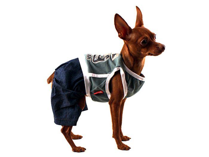 Комбинезон для собак Каскад, унисекс, цвет: зеленый. Размер M комбинезон jetasafety jpc75g m