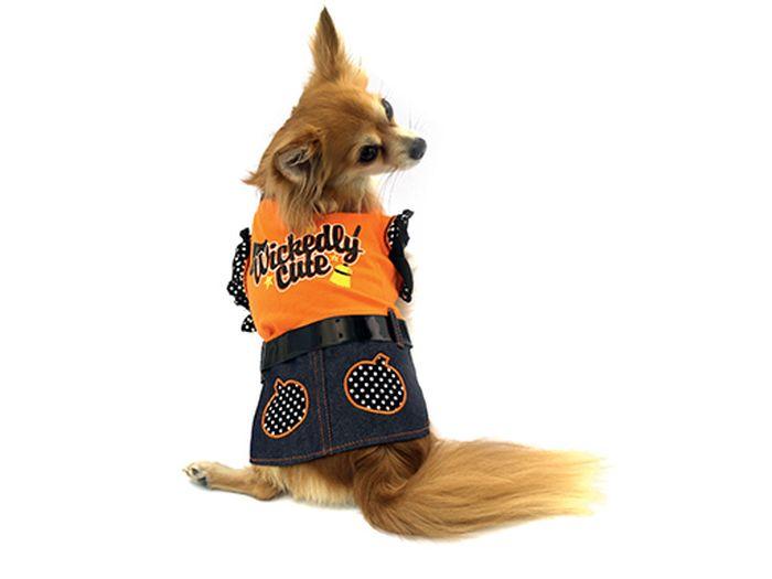 """Платье для собак Каскад """"Halloween"""", цвет: оранжевый, черный. Размер S"""