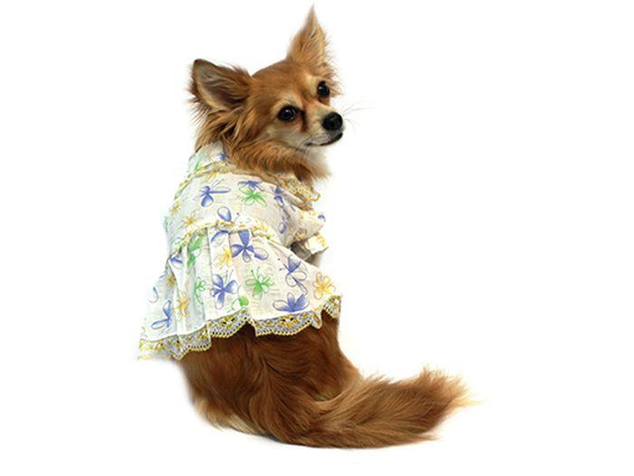 """Платье для собак Каскад """"Цветы"""", цвет: белый, синий, золотой. Размер L"""