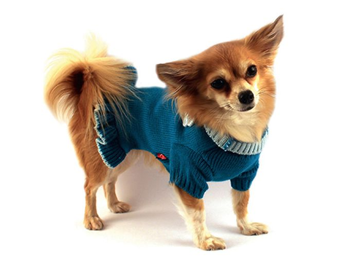 """Платье для собак Каскад """"Цветок"""", вязаное, цвет: бирюзовый. Размер L"""