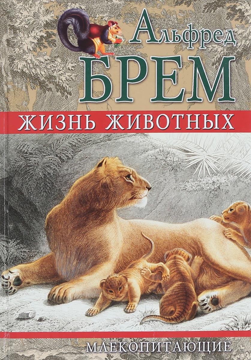 Альфред Брем Жизнь животных. Млекопитающие. Том II дарья юдина джей фокс моя жизнь том ii