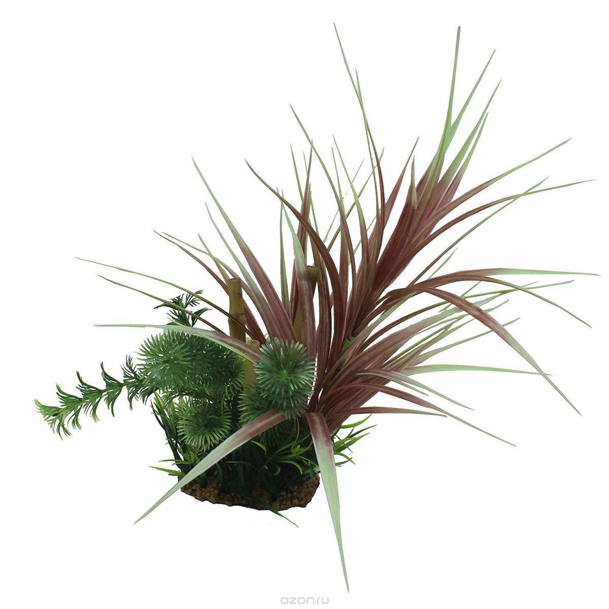 Композиция из растений для аквариума ArtUniq Офиопогон красный с бамбуком, высота 20 см для аквариума ярославль