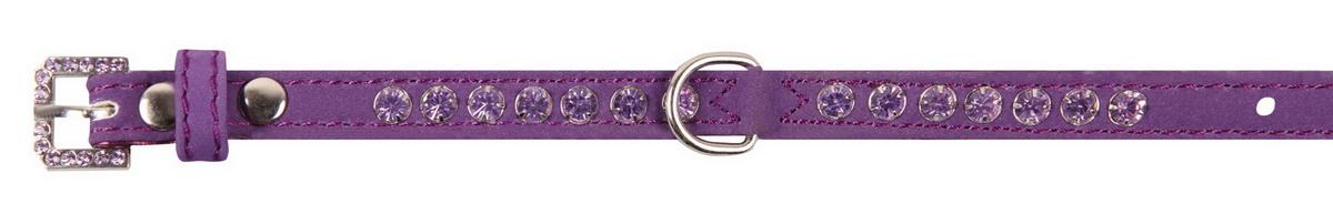 Фото - Ошейник для собак Dezzie, цвет: фиолетовый, обхват шеи 18-23 см, ширина 1 см. Размер XS. 5624112 ошейник для собак dezzie цвет синий обхват шеи 23 28 см ширина 1 см 5624417