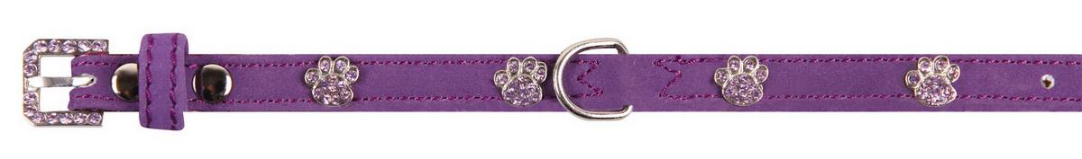 """Ошейник для собак """"Dezzie"""", цвет: фиолетовый, обхват шеи 23-28 см, ширина 1 см. Размер S. 5624124"""