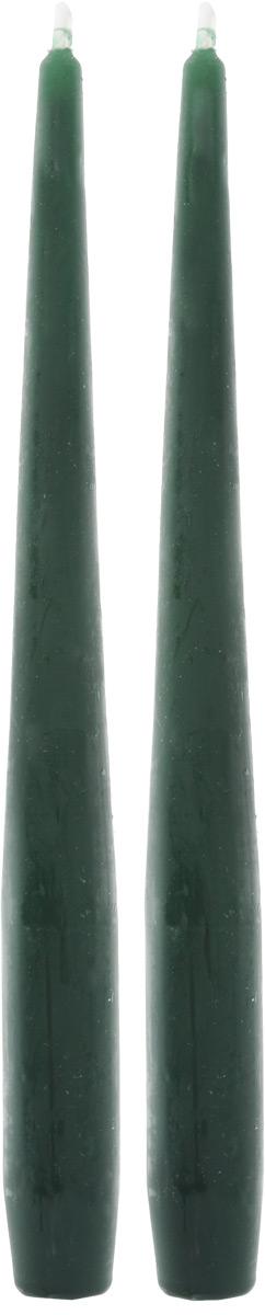 Набор декоративных свечей Омский cвечной завод, цвет: темно-зеленый, высота 25 см, 2 шт бинокль renzi