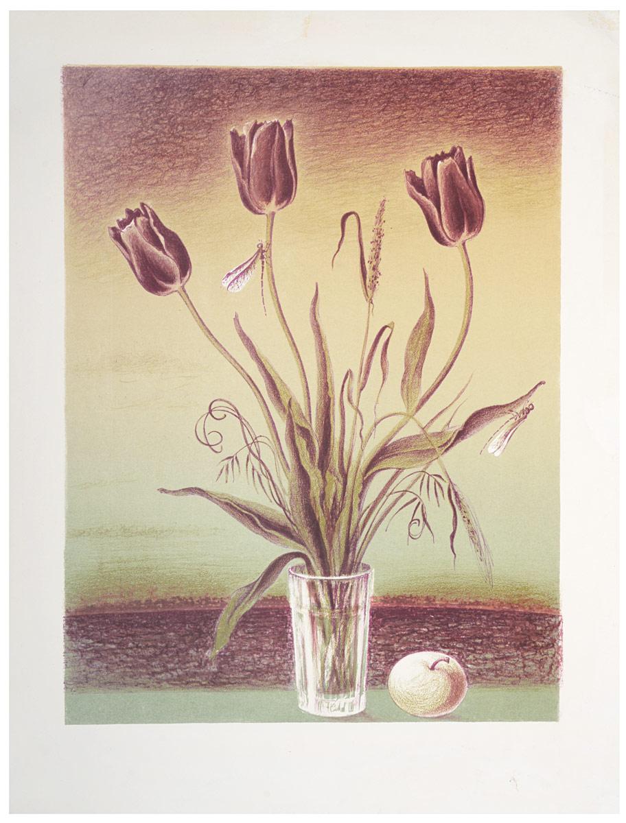 Тюльпаны. Литография. СССР (?), 1970-е годы