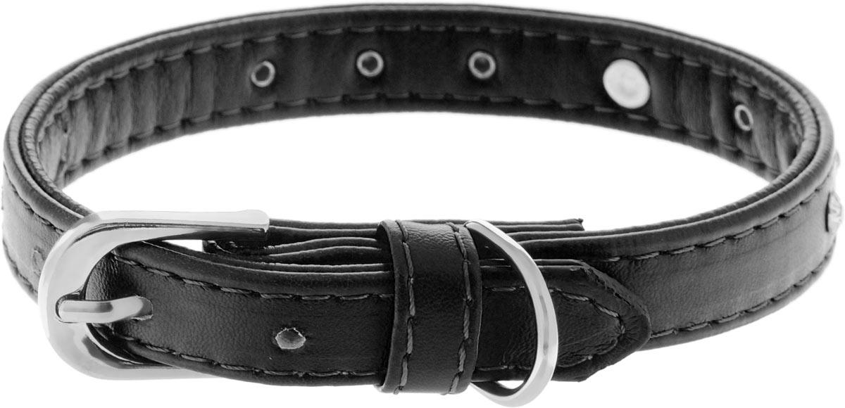 Ошейник для собак Каскад Колибри. Сердце, цвет: черный, ширина 15 мм, длина 35 см ошейник для собак каскад строгий быстросъемный диаметр 3 мм длина 55 см