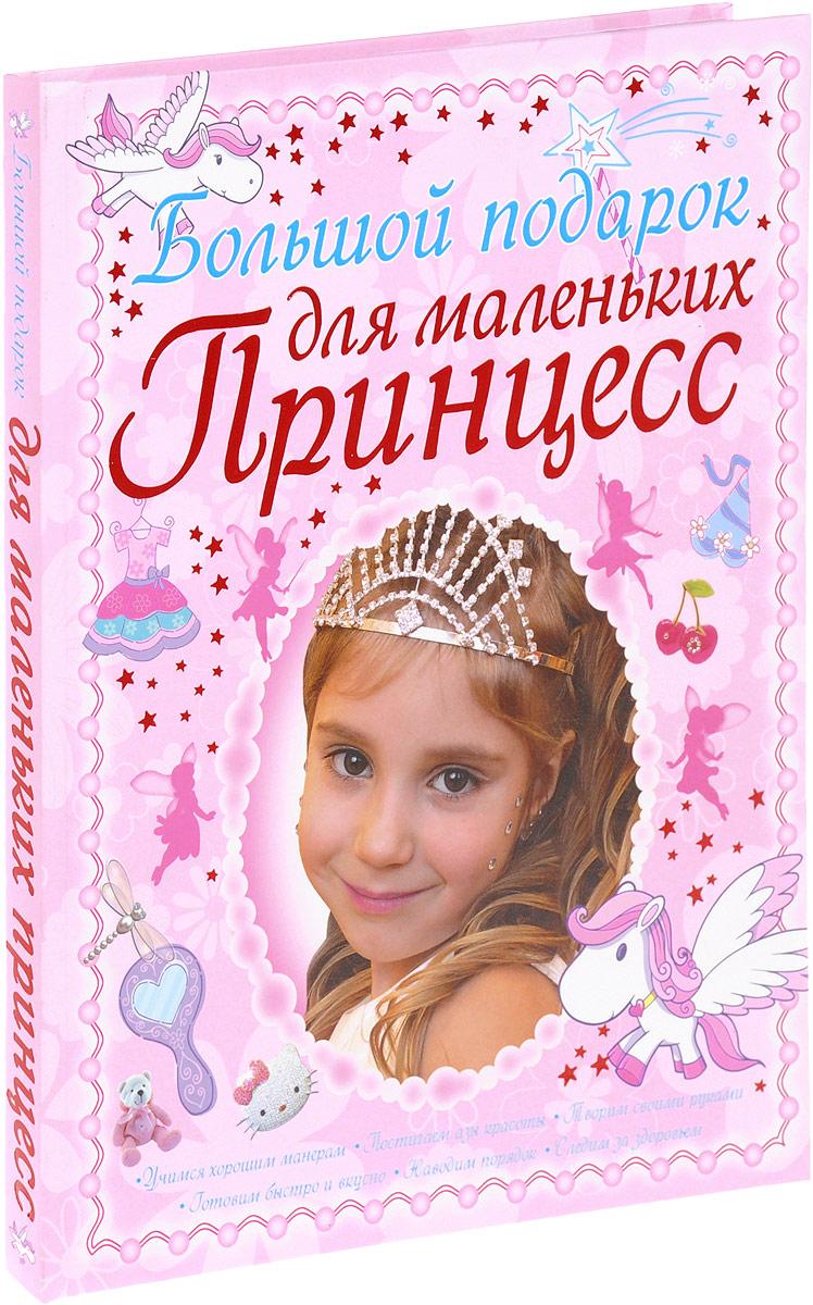 Д. И. Ермакович Большой подарок для маленьких принцесс