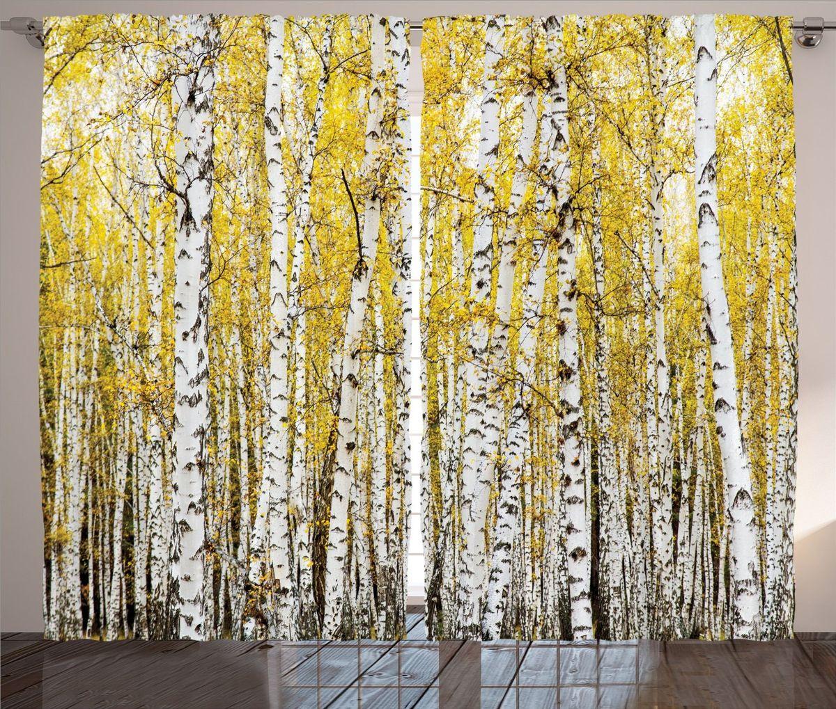 """Комплект фотоштор Magic Lady """"Осень в березовой роще"""", на ленте, высота 265 см. шсг_15752"""