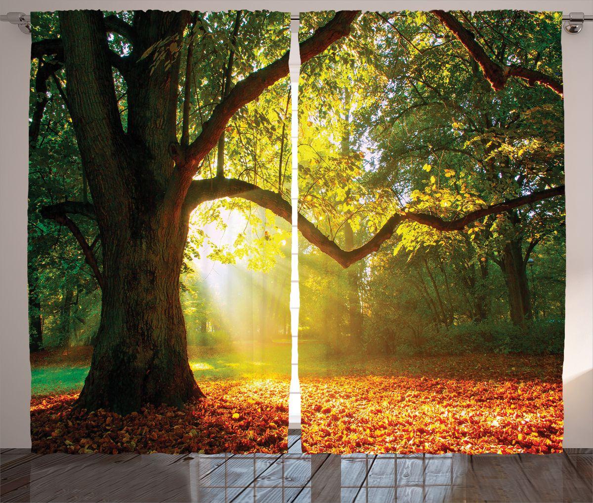 """Комплект фотоштор Magic Lady """"Старое дерево в солнечном свете"""", на ленте, высота 265 см. шсг_16589"""