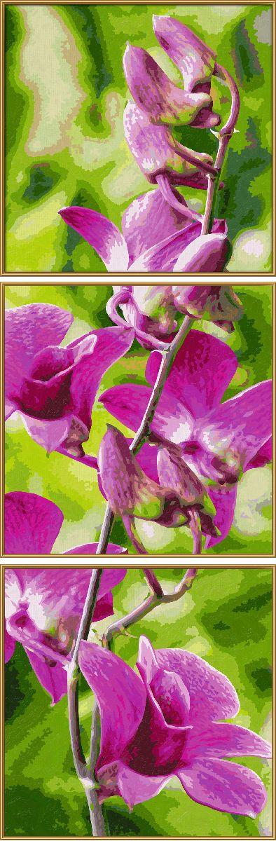 Набор для рисования по номерам Schipper Орхидеи, триптих, 120 х 40 см schipper картина триптих по номерам schipper орхидеи 50х80 см