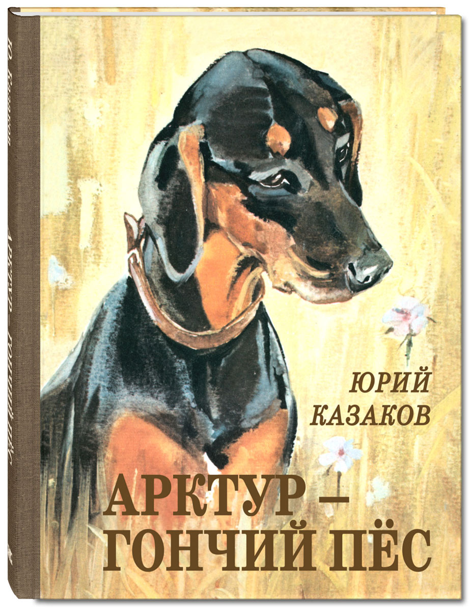 североморск картинки арктура гончего пса поступок
