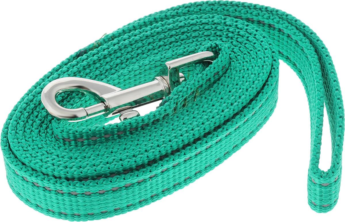 Поводок капроновый для собак Аркон, цвет: зеленый, ширина 2 см, длина 2 м поводок капроновый для собак аркон цвет розовый ширина 2 см длина 5 м