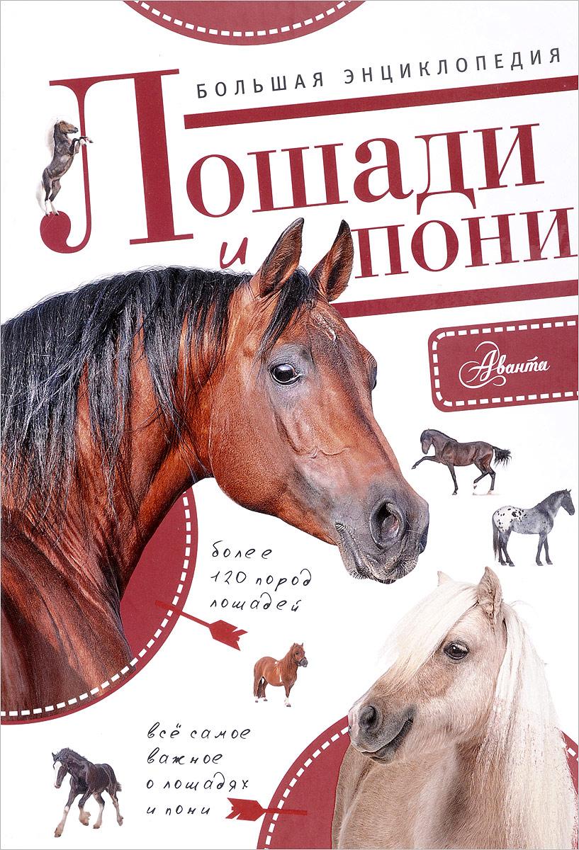 Сильке Белинг Большая энциклопедия. Лошади и пони