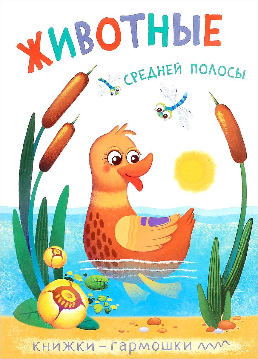 Животные средней полосы. Книжки-гармошки обучающие плакаты мозаика синтез обучающий плакат животные средней полосы