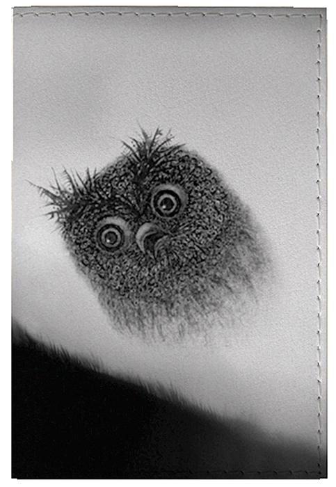 Обложка для паспорта женская Mitya Veselkov Сова в тумане, цвет: серый. OZAM415 шапка женская mitya veselkov цвет сиреневый shapka3 vio sad размер универсальный
