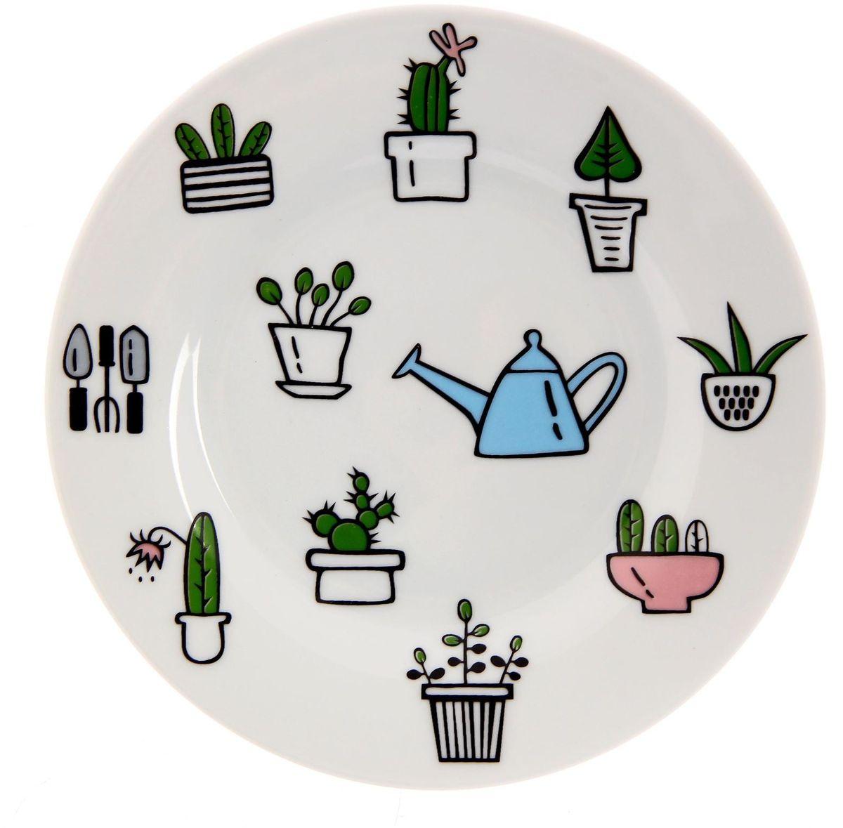 Тарелка мелкая Сотвори чудо Домашний сад, диаметр 15,5 см тарелка сотвори чудо киска диаметр 23 см