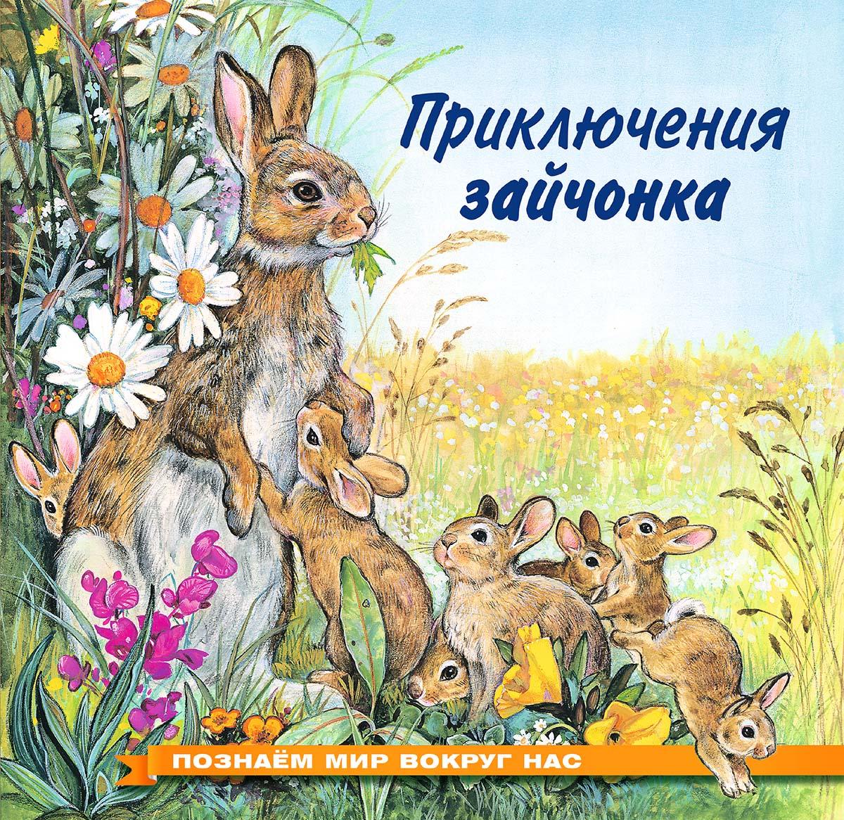 Фото - И. В. Гурина Приключения зайчонка и в гурина приключения зайчонка лисёнка медвежонка