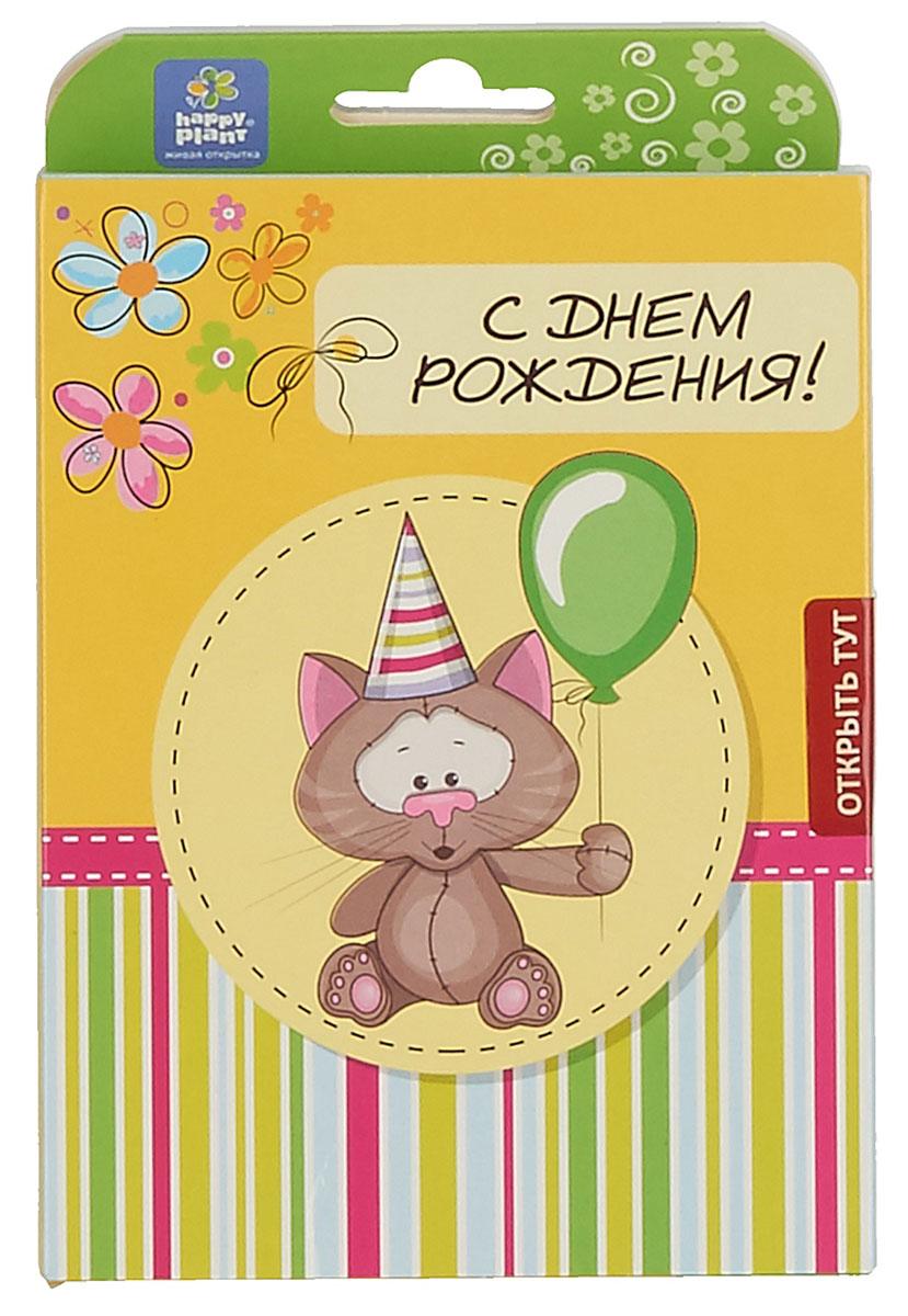 Happy Plant Набор для выращивания С днем рождения Котик набор подарочный для выращивания happy plants с днем рождения совенок