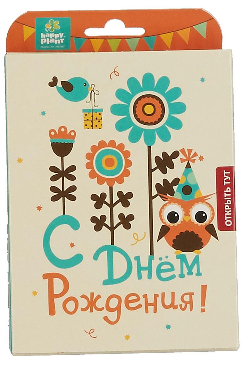 Happy Plant Набор для выращивания С днем рождения Совенок набор подарочный для выращивания happy plants с днем рождения совенок