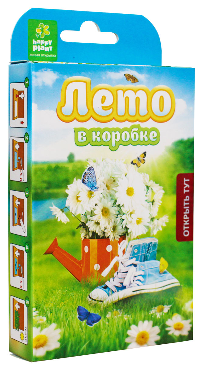 Happy Plant Набор для выращивания Лето в коробке набор подарочный для выращивания happy plants живая открытка лето в кармане