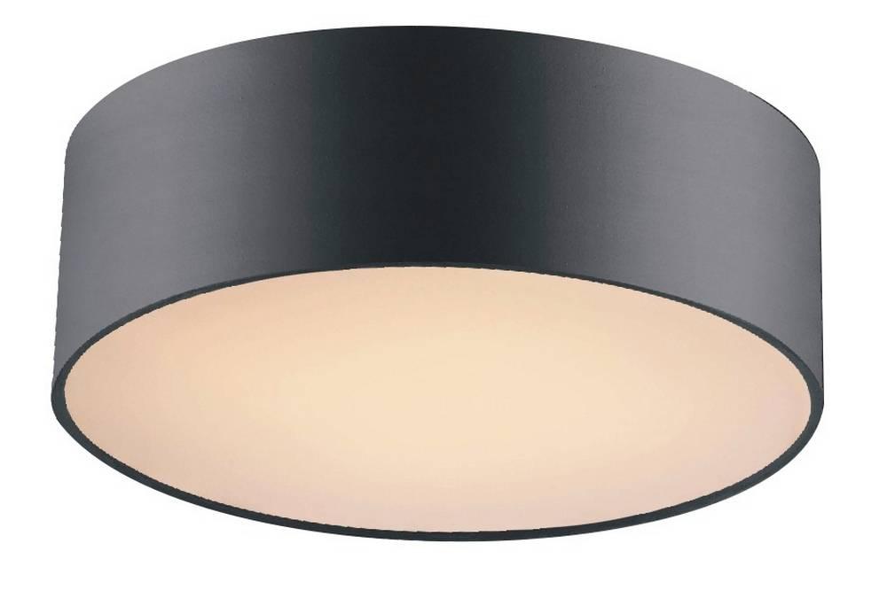 Потолочный светильник Favourite Cerchi 1514-2C1 цены