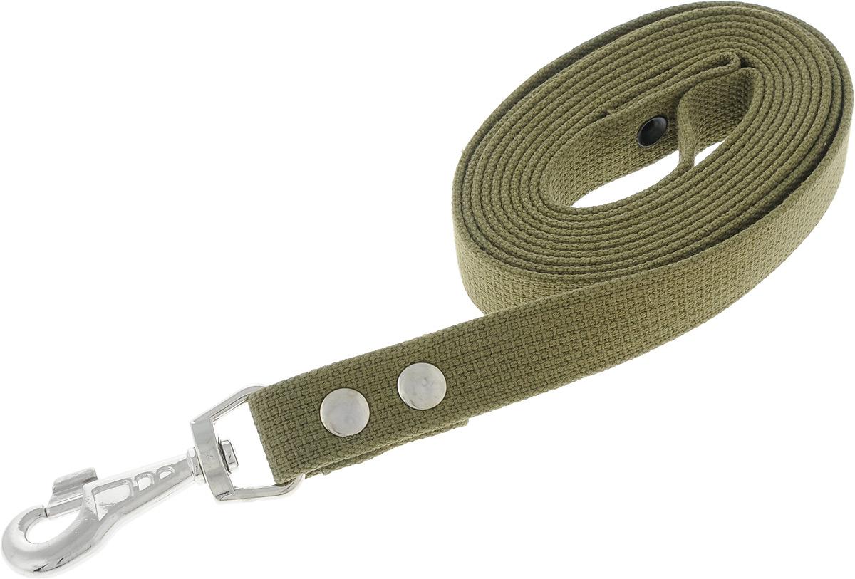 """Поводок брезентовый для собак """"Adel-Dog"""", ширина 2,5 см, длина 3 м"""